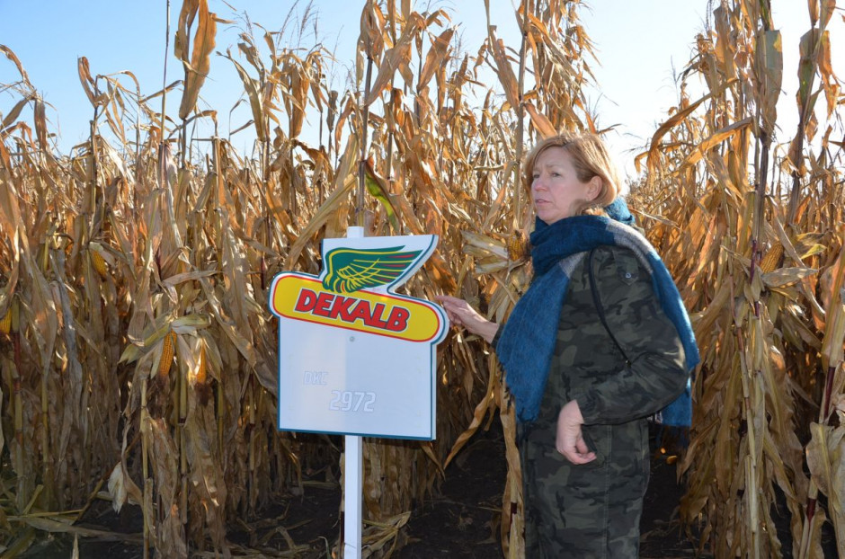 Katarzyna Gallewicz z Bayer przedstawiła przede wszystkim swoje nowości na nowy sezon ze wszystkich faz rozwojowych - we wczesnej - DKC 2972 (na ziarno i kiszonkę), średnio wczesnej – DKC 3595, która ma zastąpić naszą odmianę DKC 3441 jest polecana na słabsze gleby na ziarno i późnej - DKC 4098 polecanej na południe kraju o FAO 290, fot. M. Tyszka