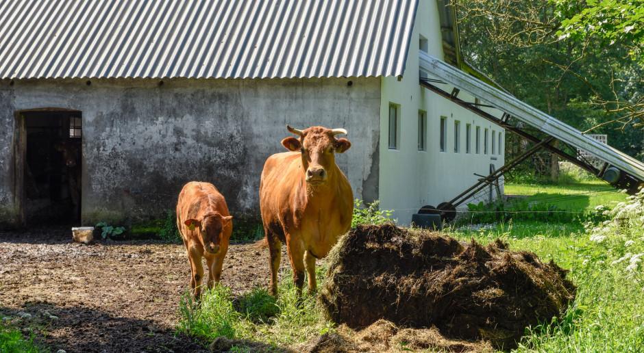 Zniesiono ograniczenia wstępu do gospodarstw rolnych