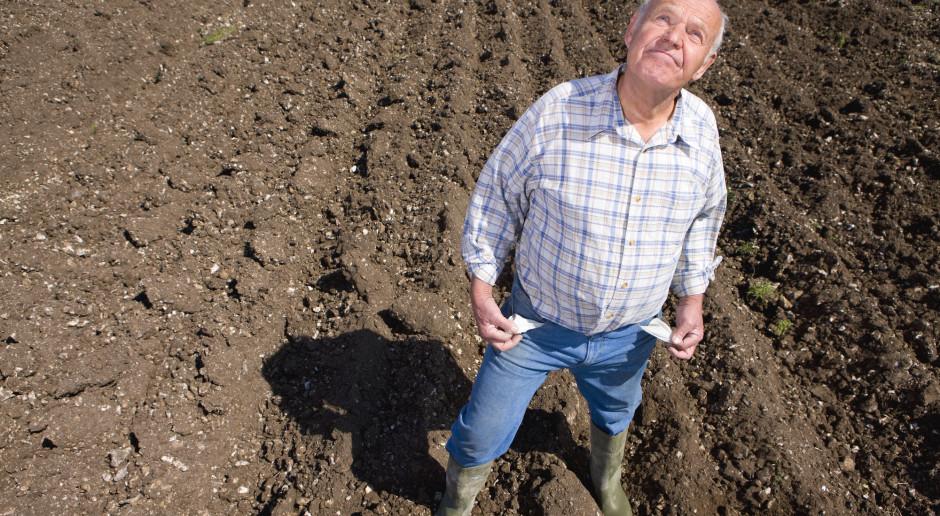Długi sektora rolnego to 915 mln zł; najwięcej zadłużonych rolników w Wielkopolsce
