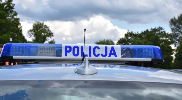 Kierowcy i policjanci uratowali rannego łabędzia