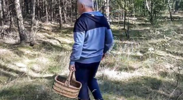 Zamiast grzybów znalazł prawdziwy skarb