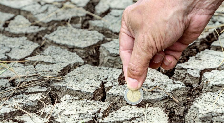 Rekordowe tempo wypłaty pomocy po suszy?