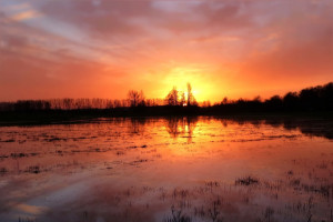 Pomoc KRUS dla poszkodowanych rolników