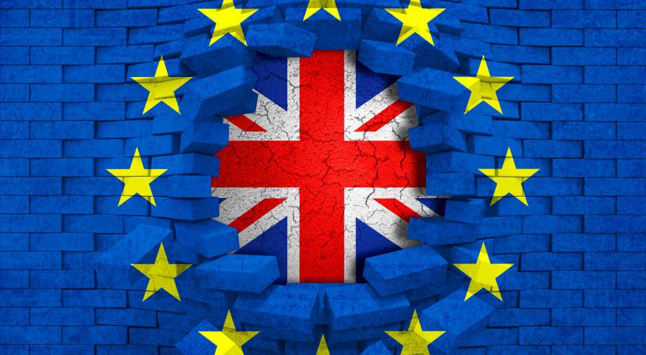 Brytyjscy rolnicy z unijnymi dopłatami nawet po twardym brexicie