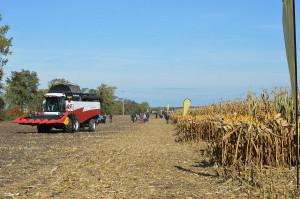 Dni kukurydzy FarmSaat w Osięcinach; Fot. Katarzyna Szulc