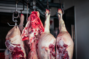 Chiny: Astronomiczne ceny żywca wieprzowego