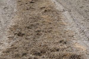 KRIR apeluje o możliwość dłuższego stosowania nawozów naturalnych