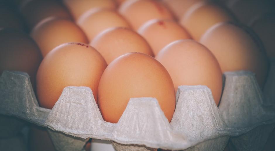 W ubiegłym roku spadł eksport jaj
