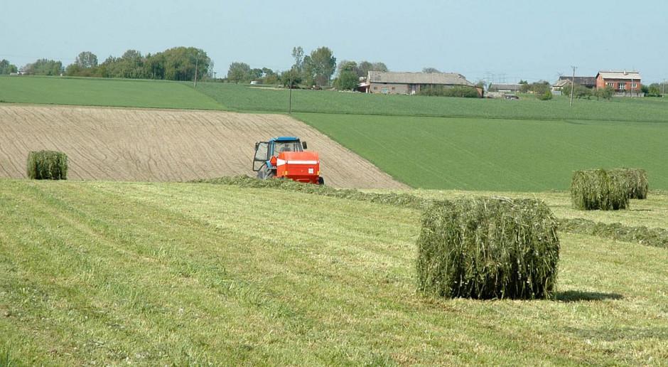 Jak to z szacowaniem strat na łąkach było?