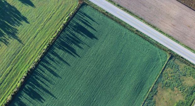 KRIR: Uprawnienia scalania gruntów dla prywatnych biur geodezyjnych