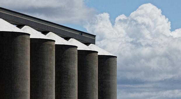 IGC: Mniejsza prognoza światowej produkcji zbóż ogółem