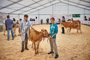 W ramach imprezy odbędzie się także wystawa zwierząt hodowlanych