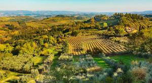 Włochy: zagrożone winobranie z powodu norm sanitarnych dla robotników sezonowych