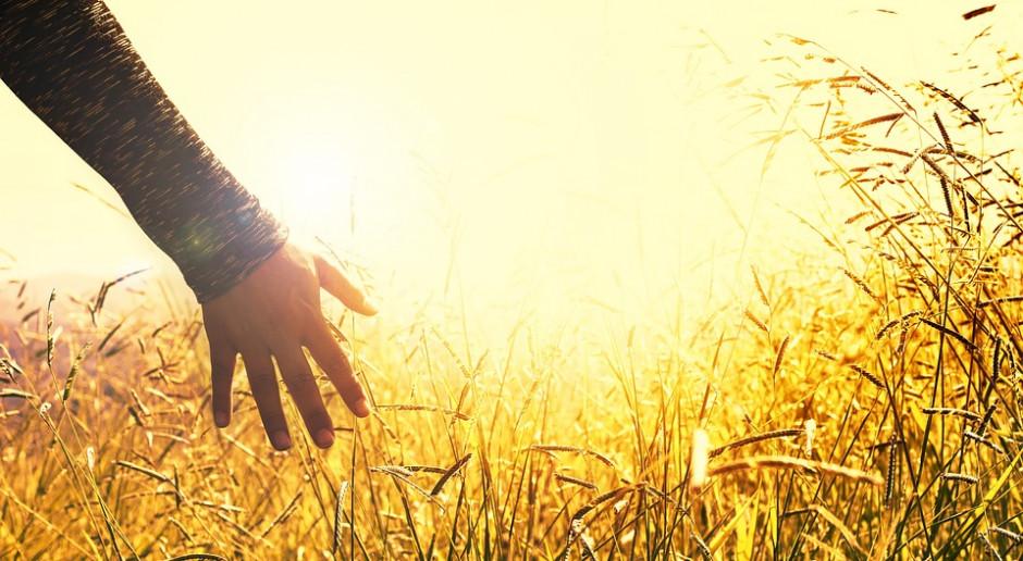 Rolnicy nie chcą odchodzić od rolnictwa