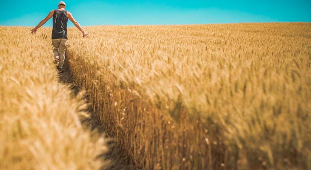 Europoseł Krzysztof Jurgiel pyta KE i MRiRW o import zbóż z Ukrainy