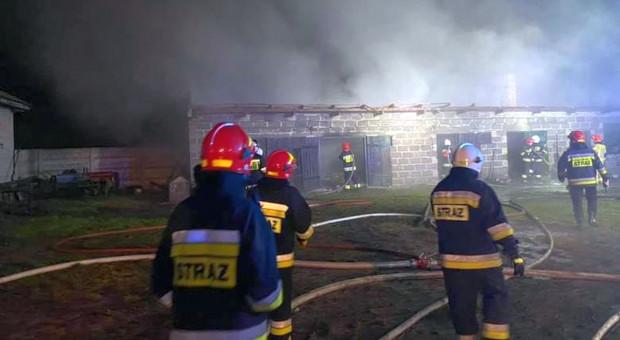 Pożary w gospodarstwach - spłonął budynek gospodarczy i stodoła