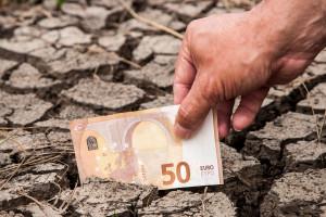 Jak długo można wypłacać 2 mln pomocy po suszy?