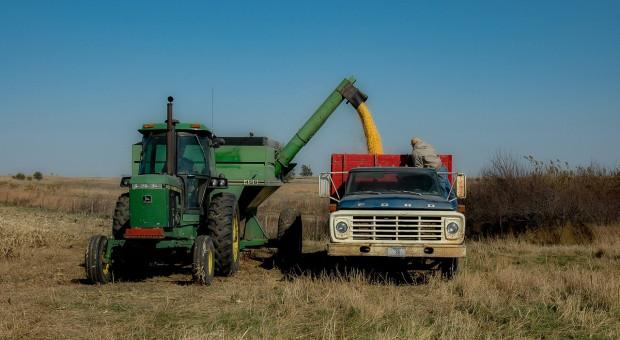 Ukraina: Zbiory zbóż przekroczyły ubiegłoroczny poziom 70,1 mln ton