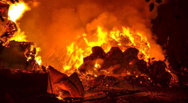 Spłonęła stodoła, sterta słomy i przyczepa. Zarzuty dla podpalacza