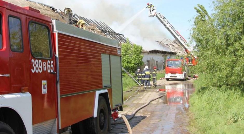 Pożar w fermie norek