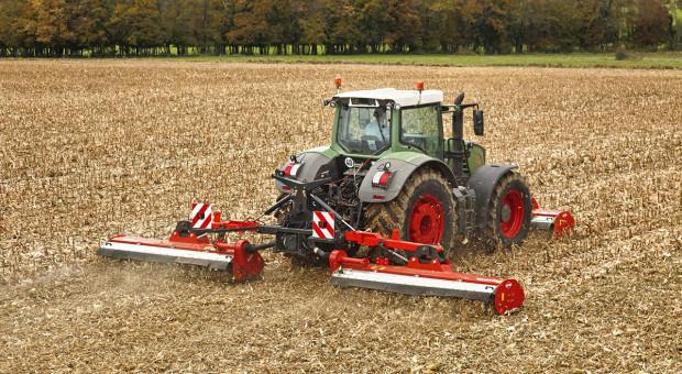 Zagospodarować ściernisko po kukurydzy