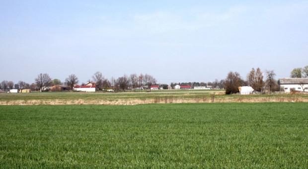 MRiRW w sprawie rękojmi należytego prowadzenia działalności rolniczej