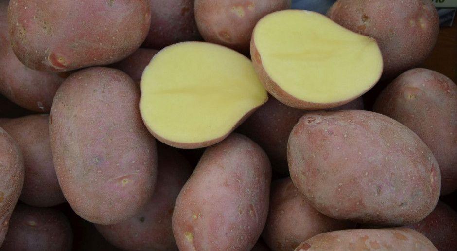 Ziemniaki nadal drogie