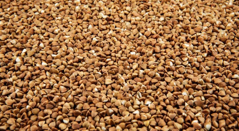 Stanowisko PSOR w sprawie pozostałości substancji czynnej w kaszy gryczanej