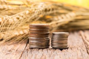 Dotacje do przetwórstwa produktów rolnych