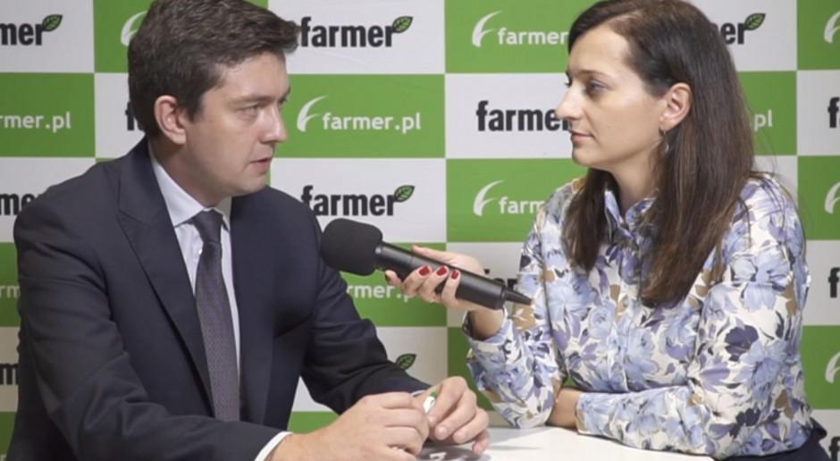 Produkcja wieprzowiny w UE będzie rosła