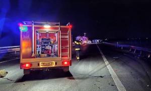 Trzy samochody zderzyły się z rodziną dzików na autostradzie A4 pod Oławą, Foto: OSP Wierzbno