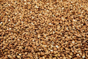 Głos KFPZ w sprawie pozostałości glifosatu w kaszy gryczanej