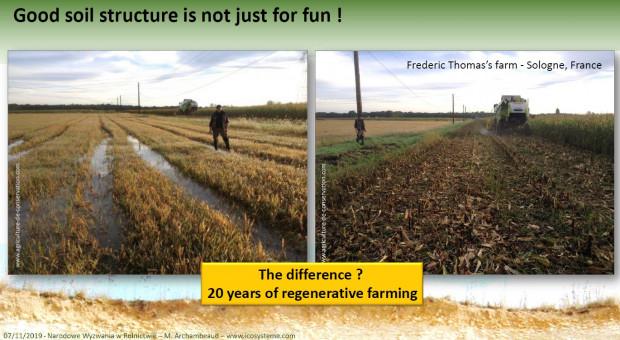 20 lat uprawy konserwującej robi różnicę