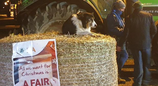 Kolejny protest rolników w Irlandii