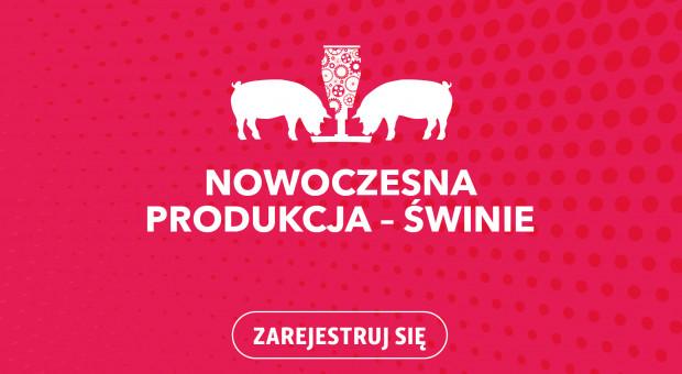 Nowoczesna Produkcja Zwierzęca – ŚWINIE. Ruszyła rejestracja!
