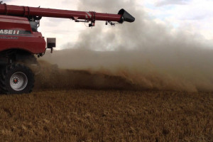 Zarządzanie resztkami pożniwnymi kluczowe w uprawie bez pługa