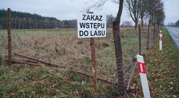 ASF: grodzenie Wielkopolski
