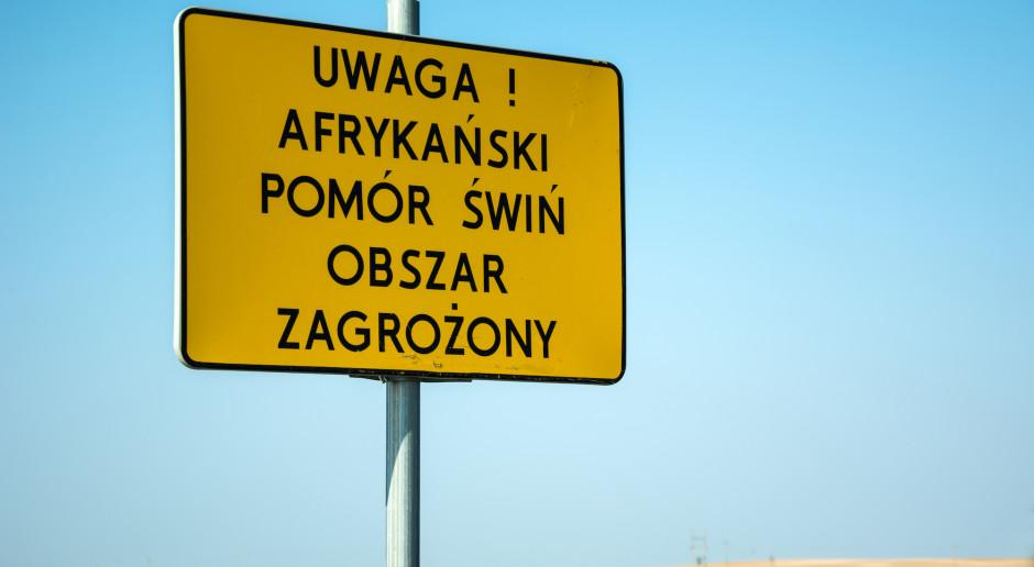 Wojewoda kujawsko-pomorski: musimy być przygotowani na ASF