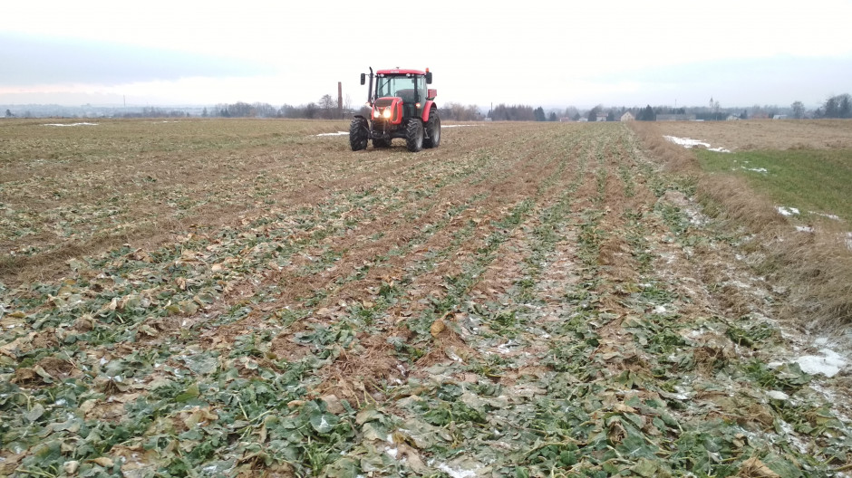 Dzięki zastosowaniu bezorkowej technologii uprawy, ułatwiony jest wiosenny wjazd na pole.