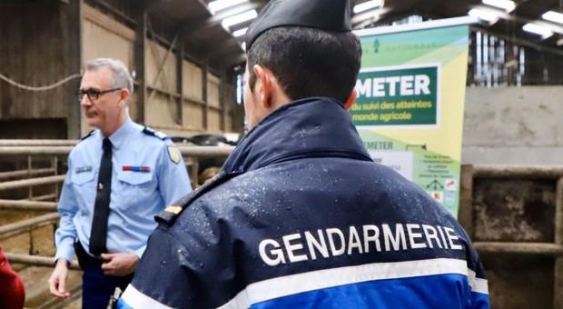 Specjalna jednostka żandarmerii bronić ma francuskich rolników