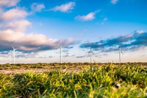 PSEW: energetyka wiatrowa potwierdziła konkurencyjność cenową