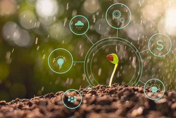 Jak są postrzegane środki ochrony roślin?