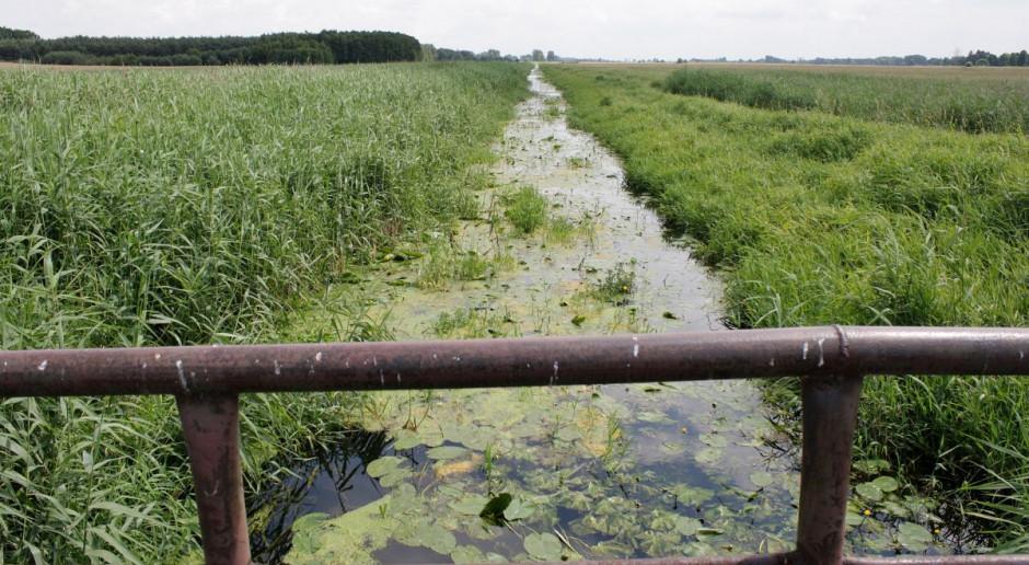 Melioracja przejdzie pod zarząd Wód Polskich. W przyszłym roku zmiana Prawa Wodnego