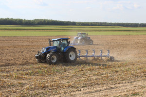 serwisy randkowe dla rolników ekologicznych serwisy randkowe w Bedfordshire