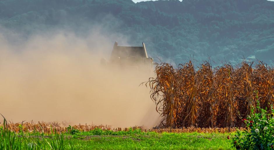 Kiedy ruszy pomoc po ubiegłorocznej suszy?