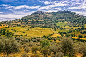 Włochy: Unijne środki dla rolnictwa trafiły do mafiosów na Sycylii