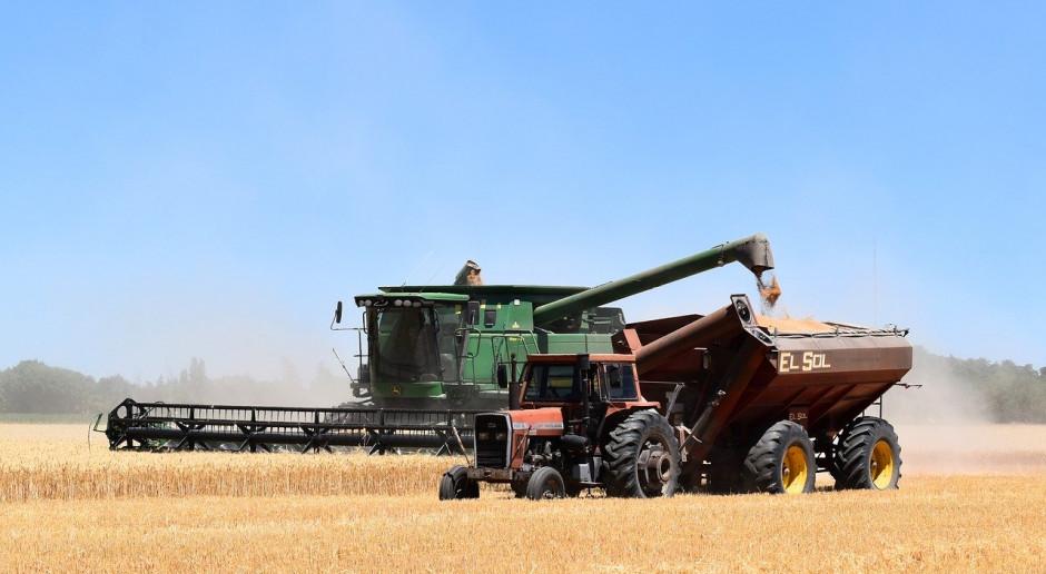 USDA: Prognoza mniejszej produkcji pszenicy w Rosji i takiej samej na Ukrainie