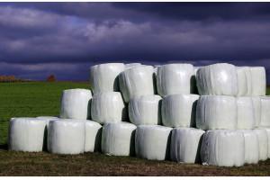 1100 gmin złożyło wnioski na dofinansowanie utylizacji folii rolniczych