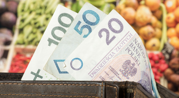 Ardanowski: kupowanie polskiej żywności służy naszej gospodarce