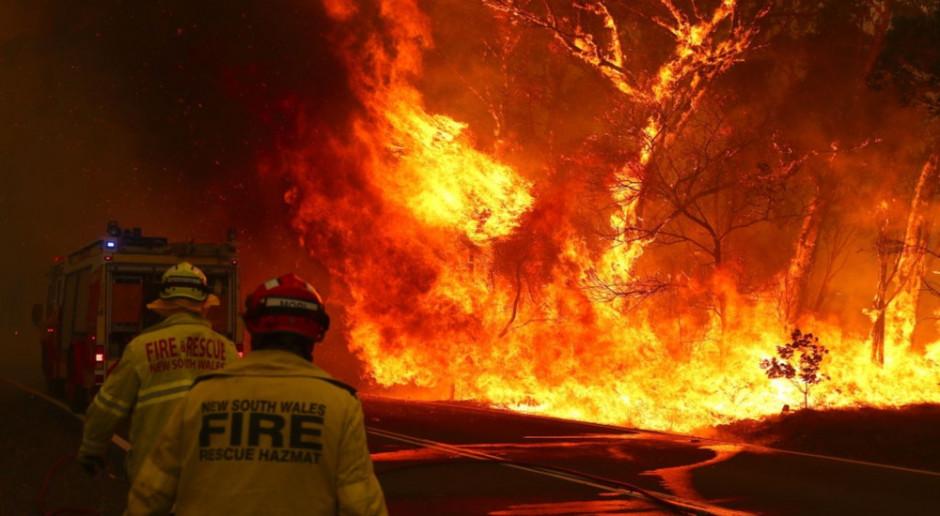 Australia: Pomoc dla rolników poszkodowanych w wyniku pożarów